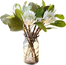 Best fake king protea Reviews