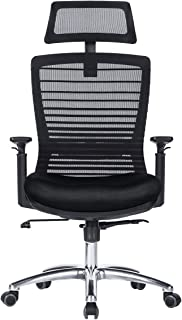 NOVELLAND Ergonomic Reclines Office Chair with Adjustable Lumbar Support and Rollerblade Wheels - High Back with Breathable Mesh - Adjustable Head & Arm Rests