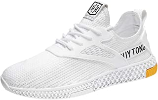 Lailailaily Men's Fahion Summer Hollow Mesh Breathable Sneakers Non-Slip Wear-Resistant Sneakers Shoes