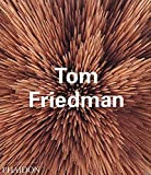 Tom Friedman (Contemporary Artists)