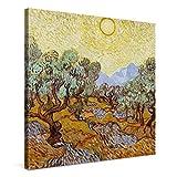 PICANOVA – Vincent Van Gogh Olive Trees 80x80cm – Cuadro sobre Lienzo – Impresión En Lienzo Montado sobre Marco De Madera (2cm) – Disponible En Varios Tamaños
