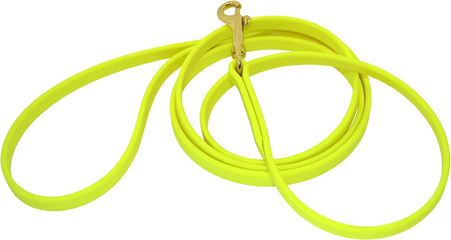 JJ Dog Deluxe Supplies Some reservation Leash Biothane