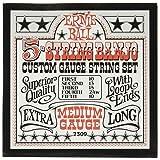 Ernie Ball Banjo 5-string Medium Stainless Steel Loop End Strings - 10-24w Gauge (P02309)