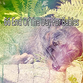 66 End of the Day for Babies