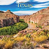 Texas Wild & Scenic 2020 12 x 12 Inch Monthly Square Wall Calendar, USA United States of America Southwest State Nature (English, French and Spanish Edition)