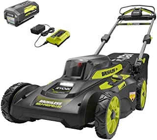 RYOBI Electric Push Lawn Mower Cordless Battery Walk Behind Battery Charger