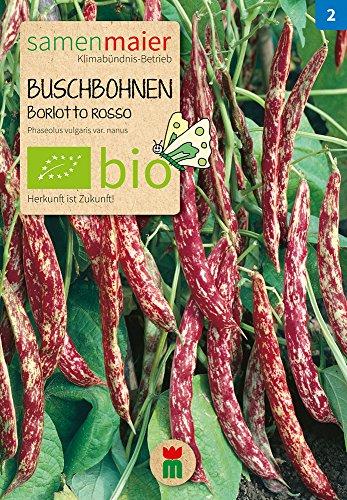 Samen Maier 840 Buschbohne (Auskernbohne) Borlotto rosso (Bio-Buschbohnensamen)