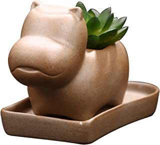 Best 10 inch ceramic planter with saucer Reviews