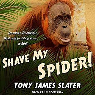 Shave My Spider! cover art