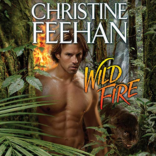 Wild Fire Titelbild