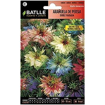 Semillas de Flores - Arañuela de Persia doble variada - Batlle ...