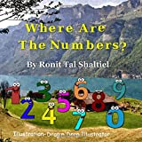 Where are the numbers ?: The adventure of the numbers [Lingua Inglese]