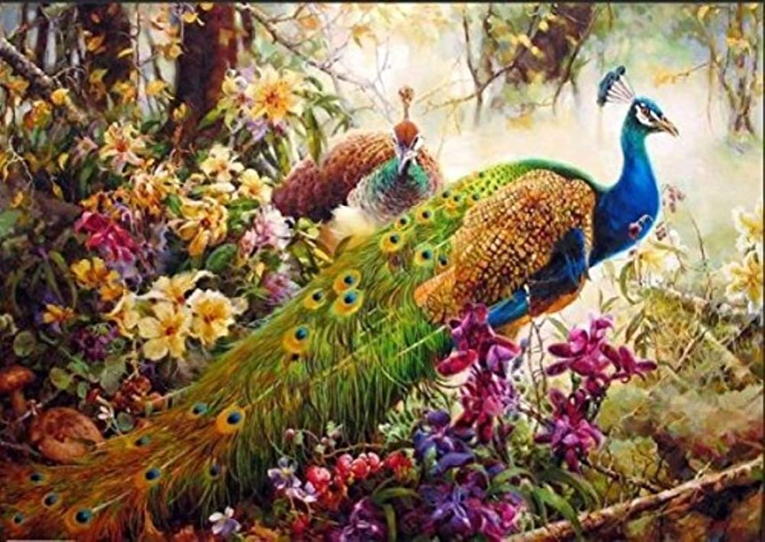 YEESAM ART New DIY Paint by Numbers Kits for Adults Kids Beginner - Peacocks, Peafowl Trees Flowers Wild Animals Birds 16x20 inch Linen Canvas - Stress Less Number Painting Gifts