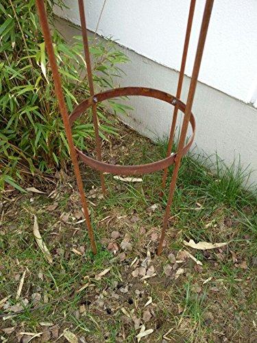 Zen Man jardín pérgola Stark material Acero inoxidable 10 mm rosensaeule enrejado Rose estructura Rank Torre Rose arco oxidado azul h150 * 31 * 31 cm: Amazon.es: Jardín