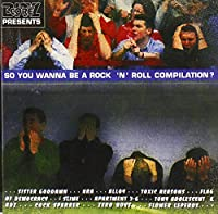 So You Wanna Be a Rock N Rol