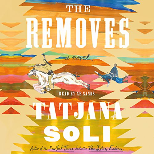 The Removes audiobook cover art