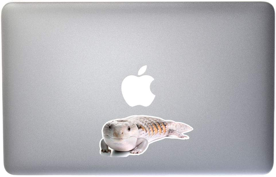D/écor Dark Spark Decals Blue Tongued Skink 4 Inch Full Color Vinyl Decal for Indoor or Outdoor use Laptops Cars Windows and More