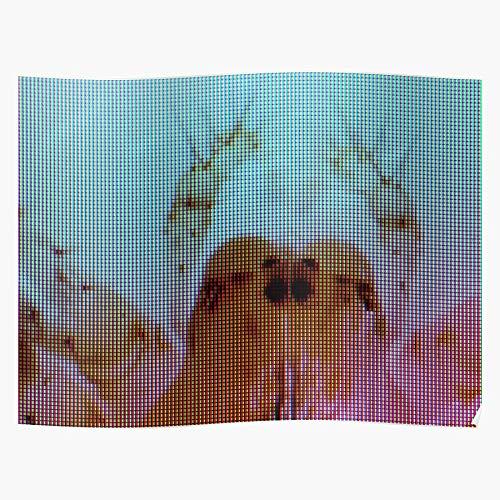 Alchemy Abstract Spider Macro Display Stylish Monitor Modern Das eindrucksvollste und stilvollste Poster für Innendekoration, das derzeit erhältlich ist