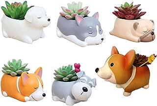 6 PCS Set Cute Cartoon Animal Corgi Husky Labrador Pug Schnauzer Shaped Succulent Cactus Flower Pot/Plant Pots/Planter/Container for Home Garden Office Desktop Decoration (Plants Not Included)