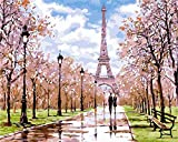 Gofission Paint by Numbers Torre Eiffel Street Cherry Blossom, 40,6 x 50,8 cm, kit de pintura para números (Torre Eiffel, sin marco)