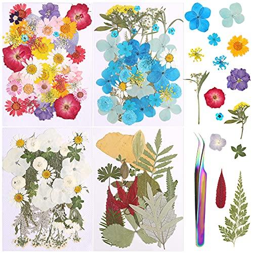 Flores Prensadas Secas, Taumie 132 PCS Naturales Flores Seca Reales con 1 Pinzas, Flor Prensada Mezclada Juego, para álbumes de Recortes, Velas de Bricolaje, uñas, Colgante Artesanías Fabricación