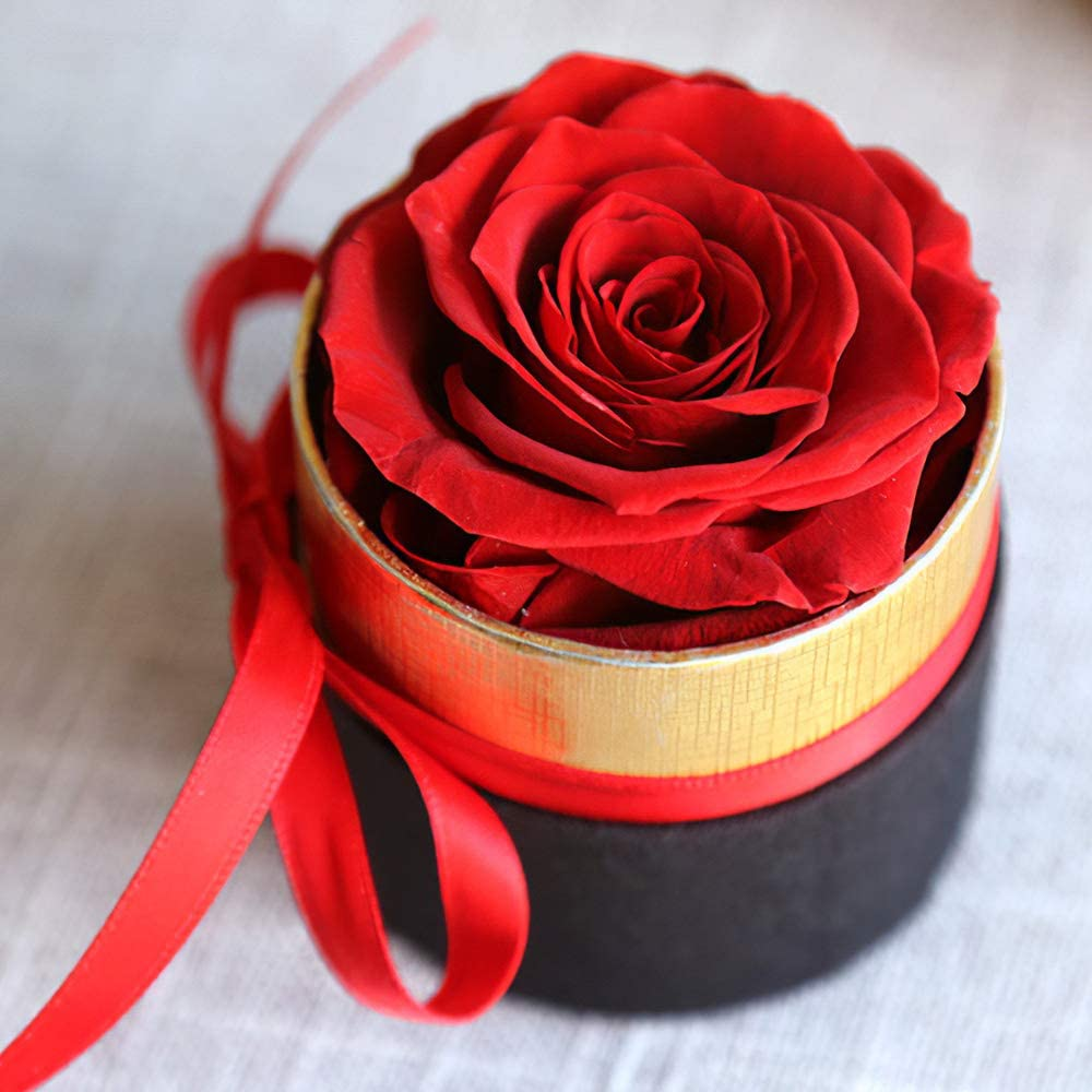 Preserved Roses Handmade Real Roses in Flowers Box Long Lasting Rose in Box for Valentines Day Mothers Day Anniversary Wedding