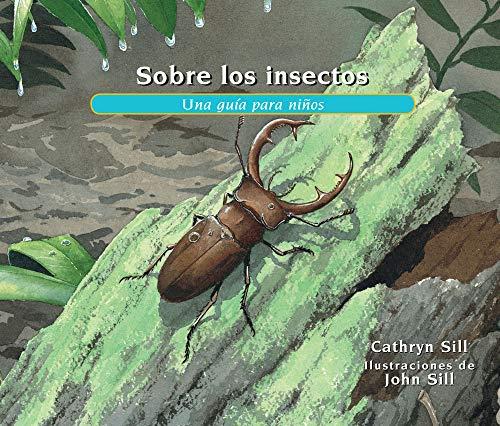Sobre Los Insectos: Una Guía Para Niños = About Insects: 26