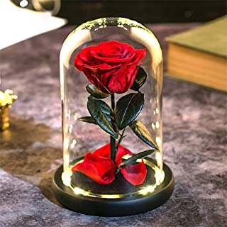Nalosun Beauty and The Beast Red Rose Enchanted Red Real Rose Handmade Preserved Rose in Glass Dome on a Wooden Base Best Gift for Her,Mothers Day Valentine's Day Wedding Anniversary
