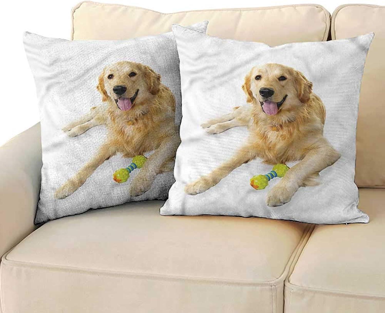 DoubleSided Printing Pillowcase golden Retriever Pet Dog Toy Premium,Ultra Soft,Hypoallergenic,Breathable 16 x16  2 Pcs