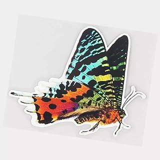 UYEDSR Pegatinas para coche, 2 unidades, multicolor monarca mariposa, coche, decoración del parabrisas trasero del coche, ...