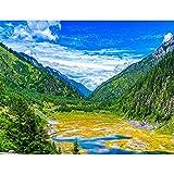 Pintura al óleo por números paisaje DIY pintura por números para adultos pintura digital de montaña sin marco sobre lienzo A11 50x65cm