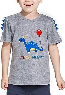 AMZTM Dinosaur Birthday Shirt Embroidery