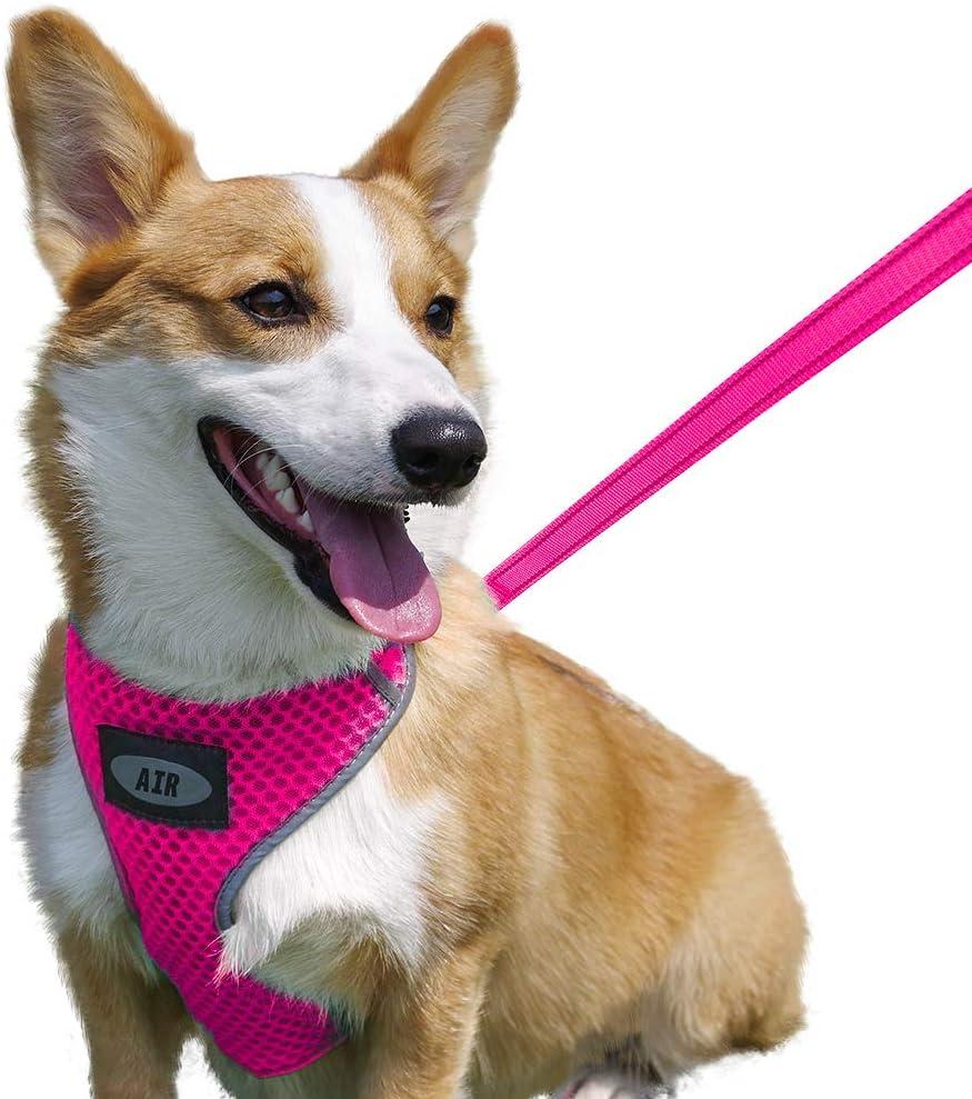 Comfortable Dog Harness Plus 4 ft Reflective Dog Leash with Padded Handle No-Choke Dog Harness Puppy Leash Harness AIR Dog Harness Leash Set Mesh Dog Harness