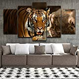 5 pinturas consecutivas Corredor de estilo moderno Decoración del hogar 5 Set Poster Animal Tiger Scenery Modular Pictures Print Spray Painting HD Wall Art Canvas 20x35 20x45 20x55cm