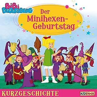 Der Minihexen-Geburtstag Titelbild
