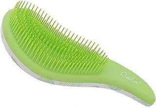 Best revive beauty brush Reviews