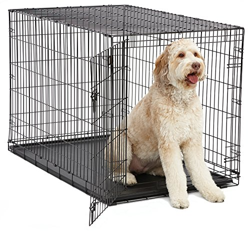 XL Dog Crate | MidWest iCrate Folding Metal Dog...