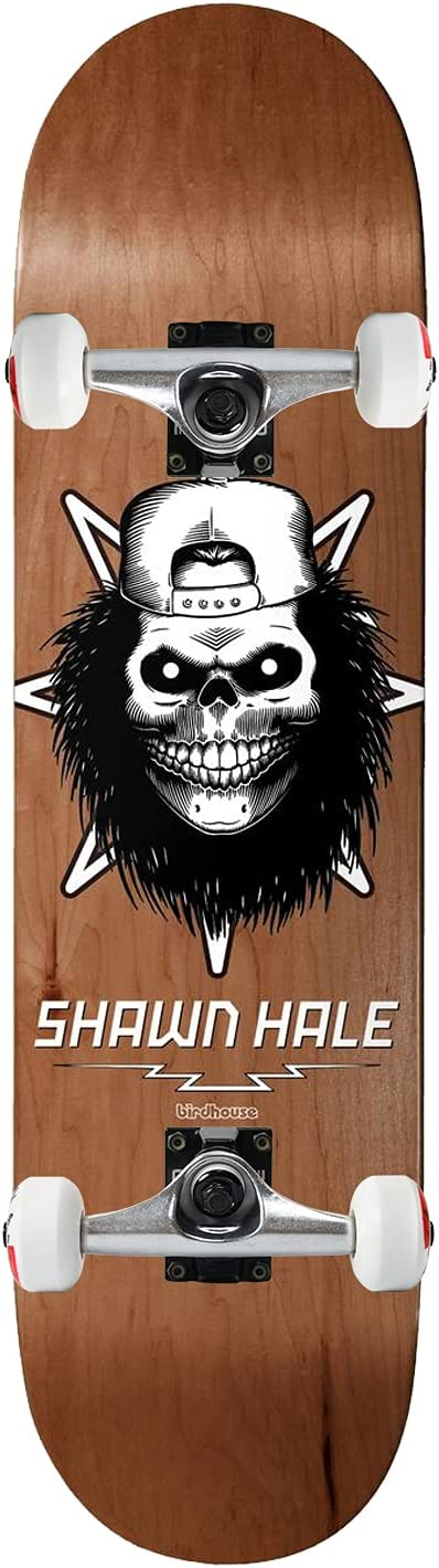 Birdhouse Skateboard Assembly Large safety special price Hale Skull Assorted 32