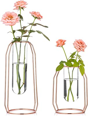 Clear Glass Bubble Terrarium//Rose Bowl Wedding homozy Glass Bowl Round Vase Used in Floral Arraignments S