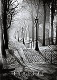 (20x28) Les Escaliers de Montmartre Paris Brassai Photo
