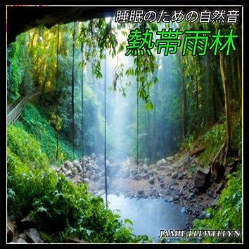 睡眠のための自然音:  熱帯雨林
