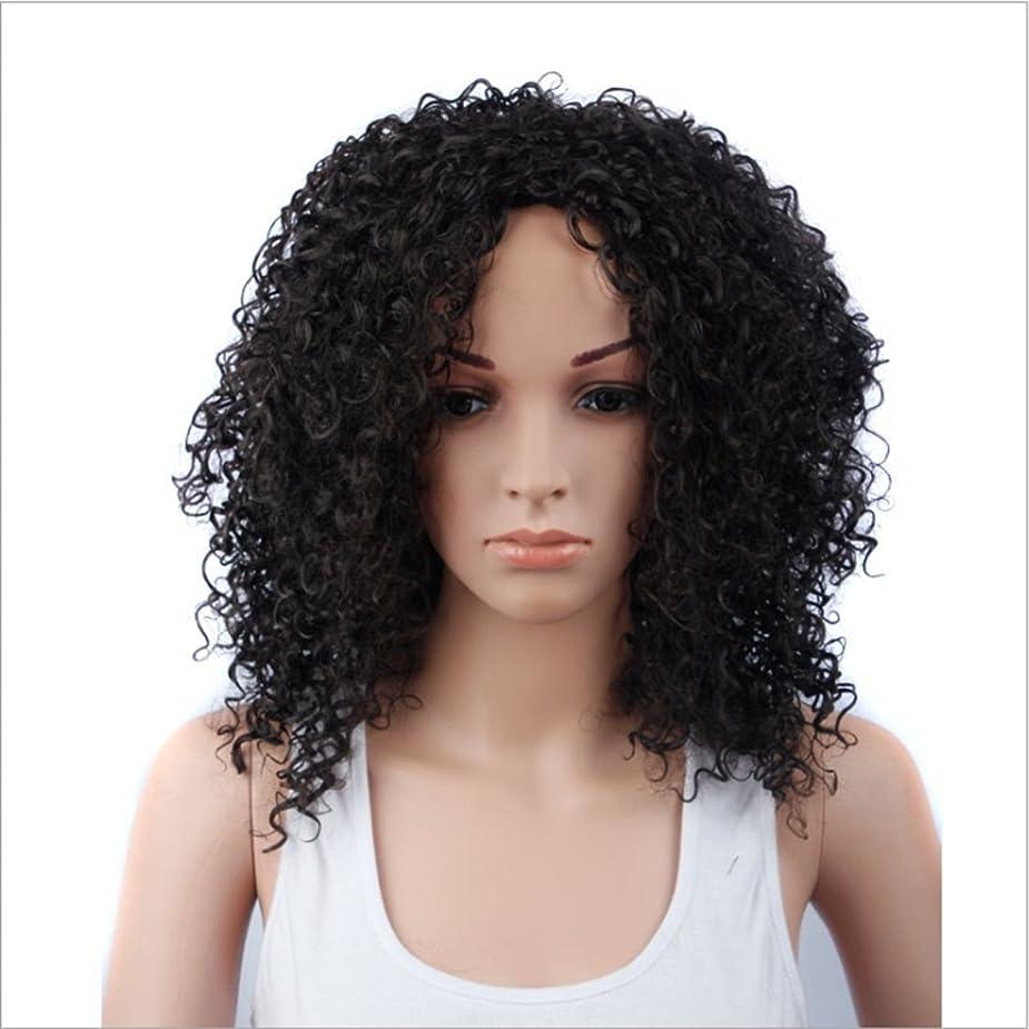 醸造所欠員不均一Koloeplf 女性のための15inch合成高温ウィッグロングバンズの短いカーリーウィッグヘアナチュラルカラーウィッグ耐熱性210g(ワインレッド、ブラック) (Color : ブラック)