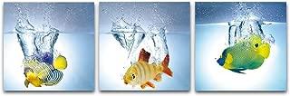 Best imagenes de peces Reviews