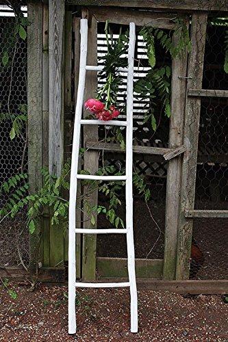 Madera pintada decorativa escalera acabado en blanco envejecido rama país casa D: Amazon.es: Hogar