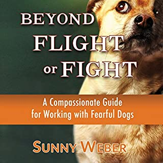 Beyond Flight or Fight cover art