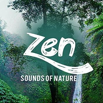 Zen Sounds of Nature