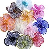 Chenkou Craft 40pcs Organza Ribbon Flowers with Beads Appliques (Mix)