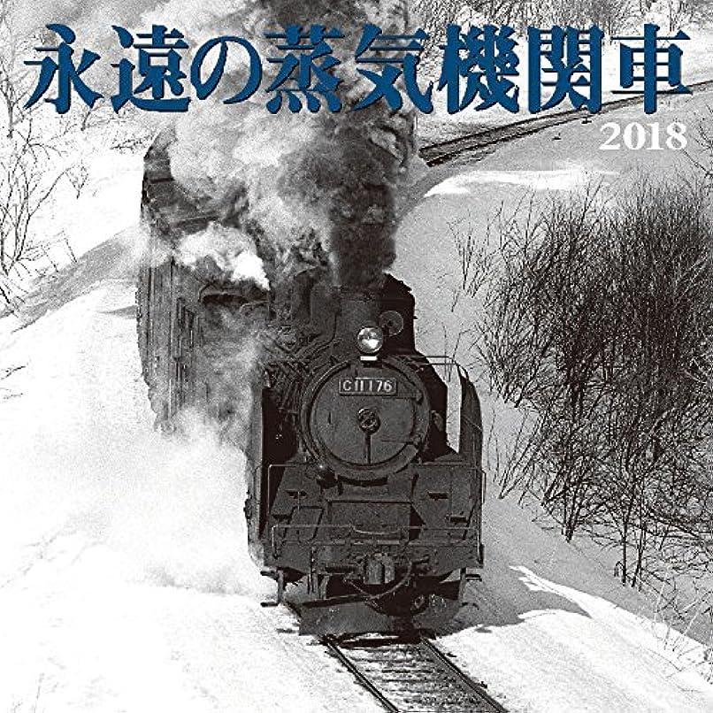 大胆真空オリエンタル永遠の蒸気機関車 2018年 カレンダー 壁掛け 60×30cm SL