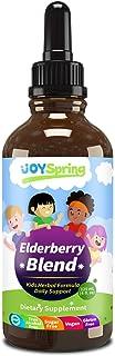 Elderberry Syrup for Kids - Best Natural Kids Cold Medicine, Pure Elderberry Blend for Sickness Relief, 3X Stronger Vegan ...
