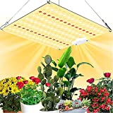 ZJING LED Grow Light, 100W Full Spectrum Plant Grow Light, con 256 Piezas SMD Leds e IR, para Plantas hidropónicas de Interior Que siembran Flores Vegetales en invernaderos de Tiendas de Cultivo